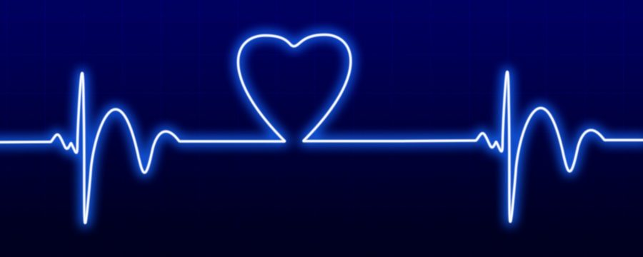 pengertian heartbeat api wordpress